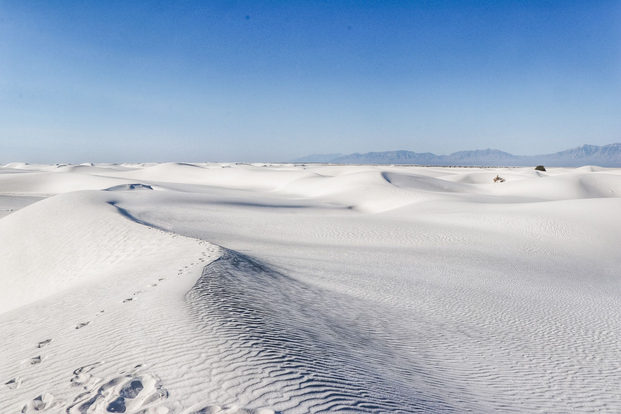 Road Trip to White Sands National Park